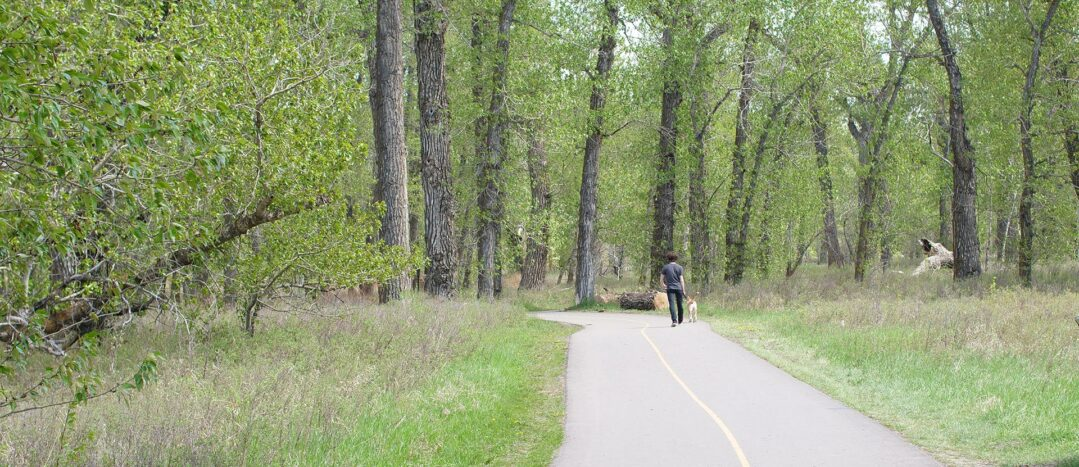 Things to do at FishCreek PP